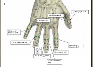 hand cmp